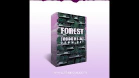 FOREST: Underground Drum Kit / Sample Pack | SAMPLE GANG